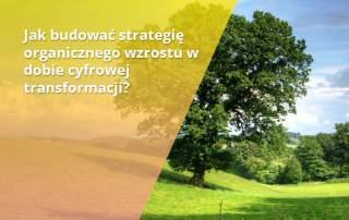 budownie strategii organicznego wzrostu w dobie cyfrowej transformacji